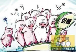 生猪价格跌跌涨涨,盼猪肉价格走出怪圈