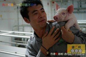 """""""猪快乐・人轻松""""和萌猪的第一次亲密接触"""