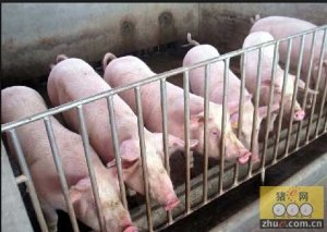 浙江省探索畜禽养殖场生态环境负面评价机制 一批养殖场获环境准入
