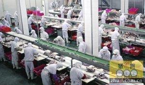 肥东县30%考核挂钩生猪定点屠宰管理工作