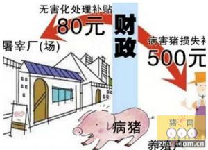 长汀县出台《2015年生猪养殖污染专项整治工作方案》