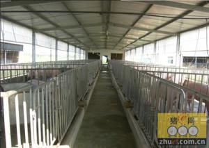 猪舍的清洗和消毒