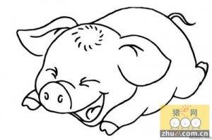 """史上最亏损""""猪周期""""结束 猪肉价格或将全年上涨"""