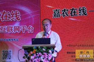 嘉农在线――大伟嘉产业互联网平台战略发布会在重庆成功举办