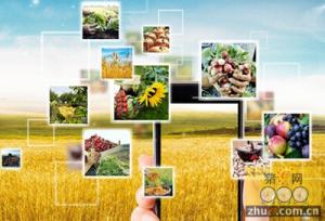 """当""""农业""""站在""""互联网+""""风口"""