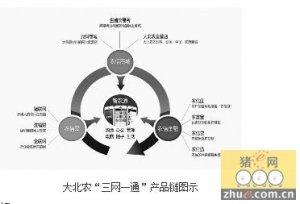 大北农三大平台打造智慧养猪生态圈