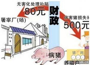 2015年养猪人不可不知的补贴政策