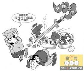 福建漳州一肉食黑作坊主被处刑罚