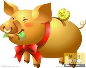 争取生猪调出大县奖励资金326万元