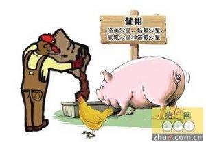 农业部拟禁用4种抗生素,数百家企业兽药批文将被取消