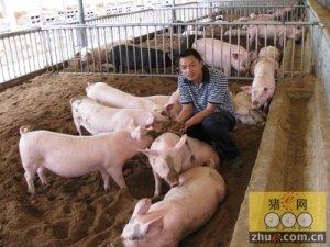 《浙江省畜禽养殖污染防治办法》7月1日实施 养猪不能再任性了
