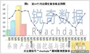 锐奇数据15年6月猪评:北方替代南方领涨全国猪价