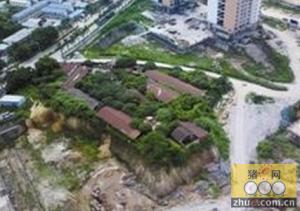 一个非法养猪场,为何拦下了市重点民生工程?