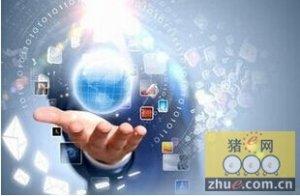 选择电子采购平台 选择品牌商or实力派?