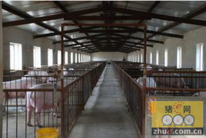 猪舍建改卫生圈的几条原则