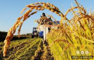 财政部:调整和完善扶持农业产业化的相关政策