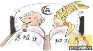 2015年养猪政策补贴种类及金额