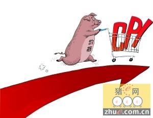 生猪价格VS CPI数据关系紧密如影随形