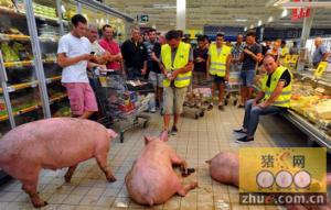 法国农民抗议续:开始在超市养猪!