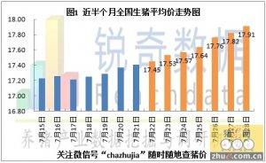2015年7月29日猪评:广东迅速拉升周边省市猪价