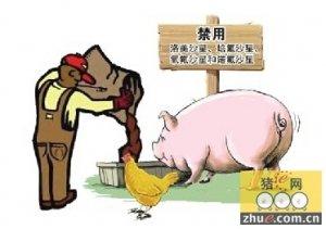 注意!又有多批畜禽肉被检出禁用兽药