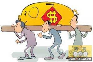 农民日报评论:离场养猪人莫因猪价上涨而后悔