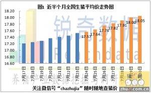2015年7月31日猪评:广东猪价微跌山东市场现冻肉