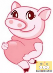 母猪孕猪流产、死胎、弱胎,原来是因为......