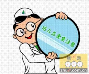 王泽岩:深入解析当前猪病诊疗工作中的几个误区?