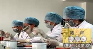 科学家发现控制猪细环病毒造成的猪并毒血症