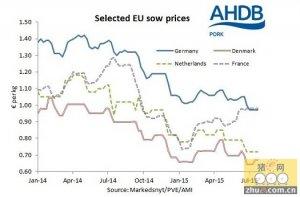 欧盟母猪价格下滑减缓