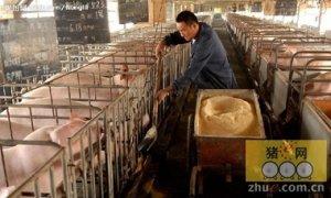 养猪业的准入门槛已在无形之中构建