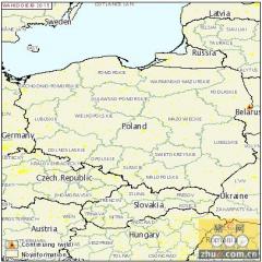 波兰又一头野猪死于非洲猪瘟