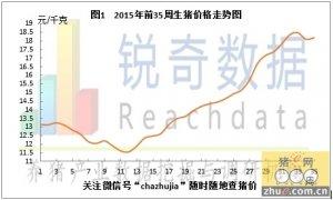 锐奇数据15年35周猪评:本周猪价跌涨调整幅度有限