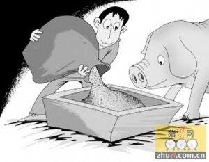 猪对蛋白质与氨基酸的需求