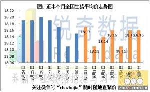 2015年9月7日猪评:东北跌价态势向华北蔓延