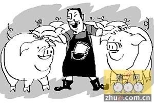 全国养猪百强县公布:五大指标缺一不可