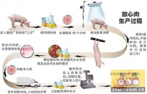 猪肉生产逐步实现 一条龙信息化监管