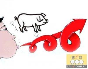 以现在的存栏情况 猪价很快就会止跌企稳