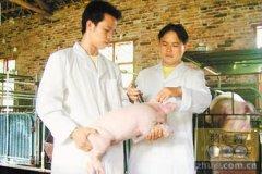 泸州市兽医系统技能大比武在泸县举行