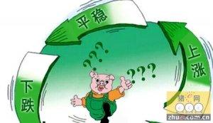 节日需求不明显打压猪价 猪价上涨还需等待