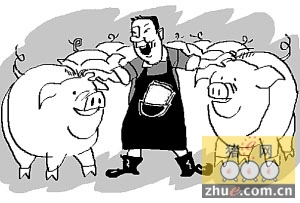 猪价调整即将结束 养猪业迎来好时机