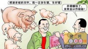 善待员工是养猪致胜的法宝