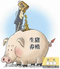 """养猪人的基本技能""""三看一逐渐"""""""