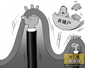 """猪价跌跌不休 网友调侃遭遇""""猴市"""""""