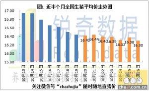 2015年10月27日猪评:屠企白条价格持稳市场弱跌