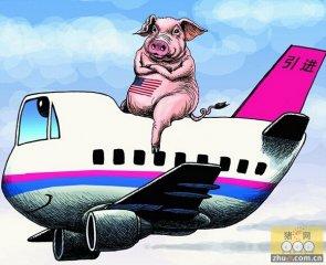 """千头法国种猪""""坐专机""""来豫 欧洲农场""""搬到""""中国"""