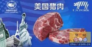 外国同行:对中国出口猪肉正在加速,唯一阻碍是储备肉投放