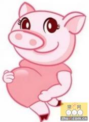 几种易致母猪死胎的猪病分析