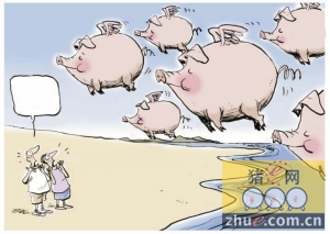 中小猪场出局、走私冷冻肉、环保重压 猪还能飞多久?